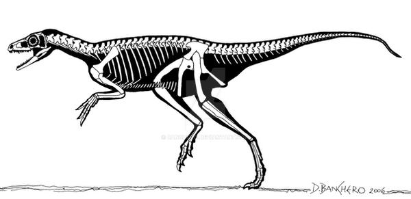Eoraptor by banchero
