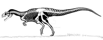 Piatnitzkisaurus by banchero