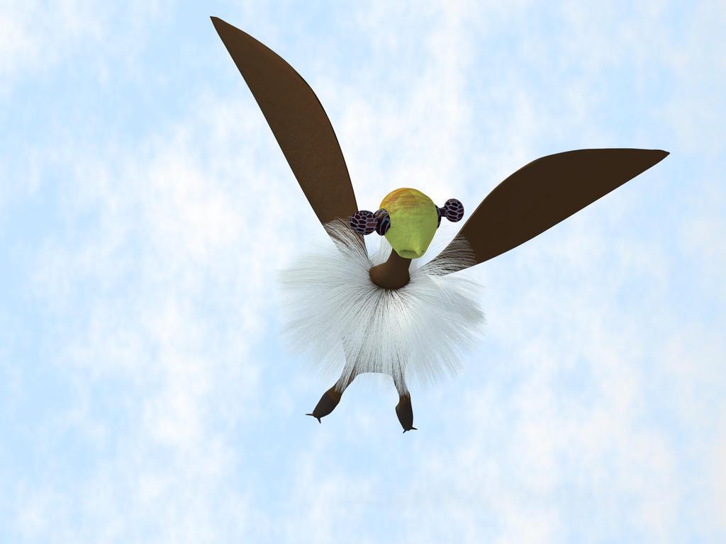 A Tackiebird Up Close by charliemc
