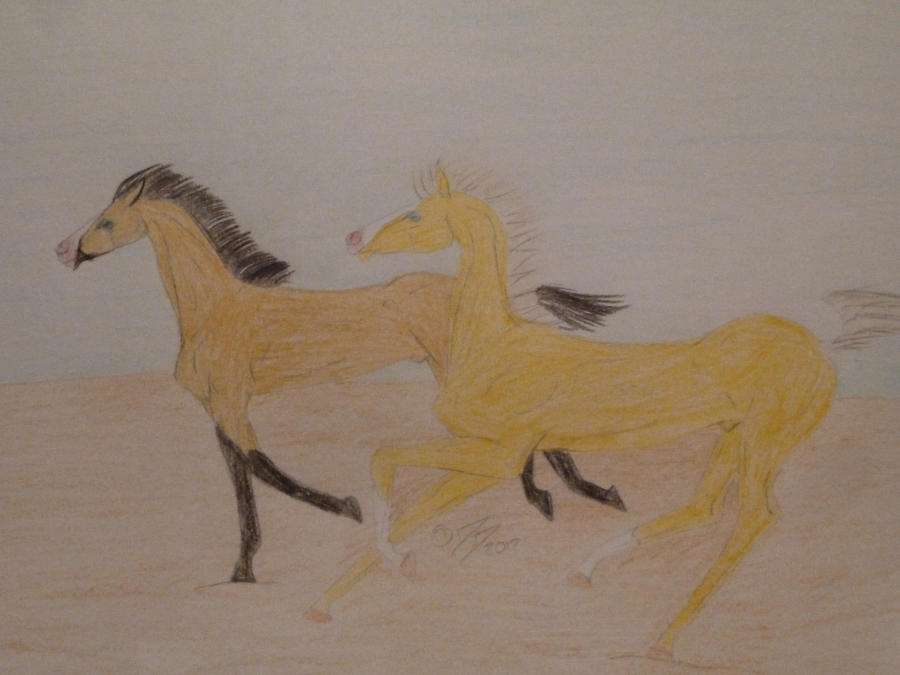 Buckskin Colt (SOLD) by ObsidianFarm