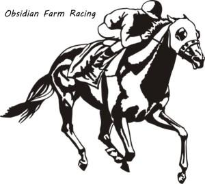 ObsidianFarm's Profile Picture