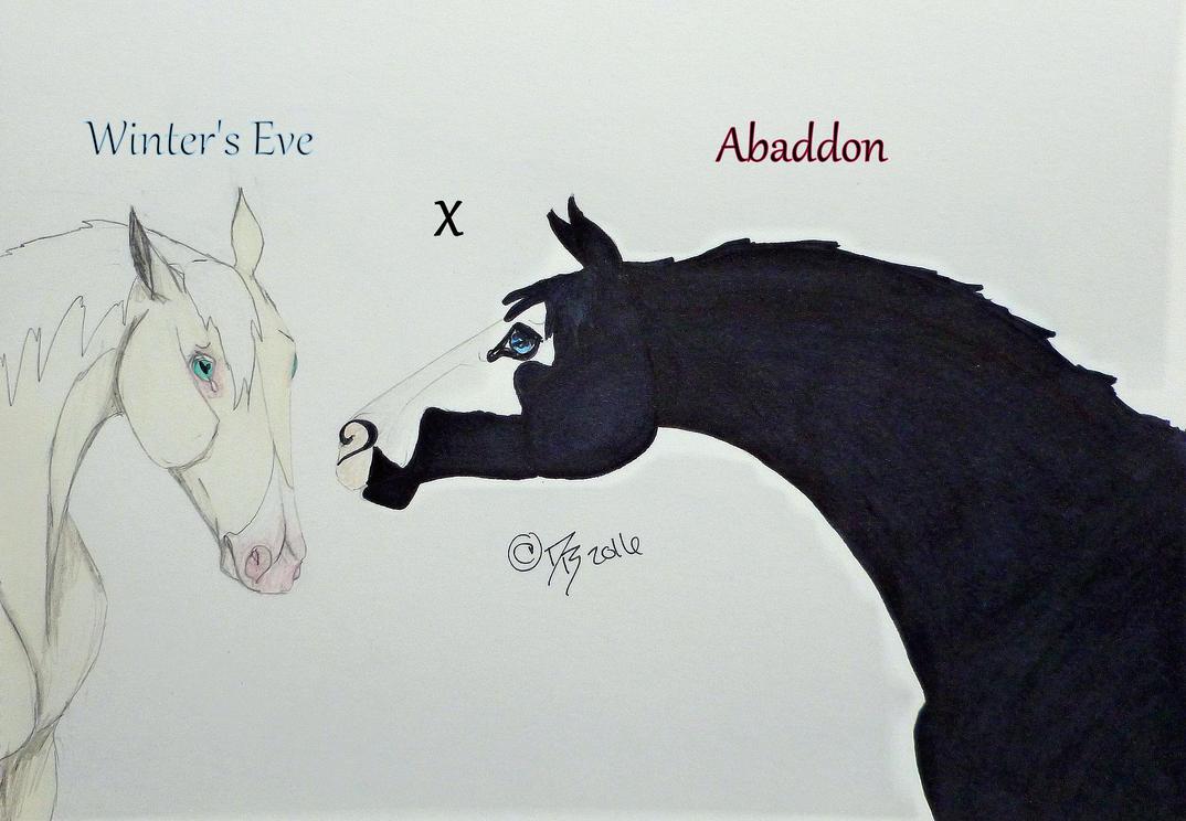 Abaddon x Winter's Eve by ObsidianFarm