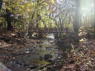 Old Bridge by Lord-Karsus