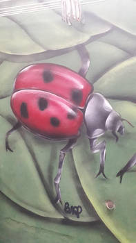 Graffiti ladybug
