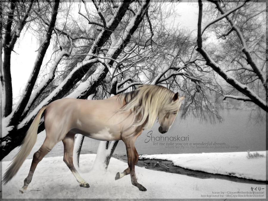Erosaf's Foaling Thread Shahnaskari_by_kay115