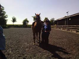 Callum's saddle fitting