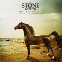 Stone Horses T-Shirt Contest