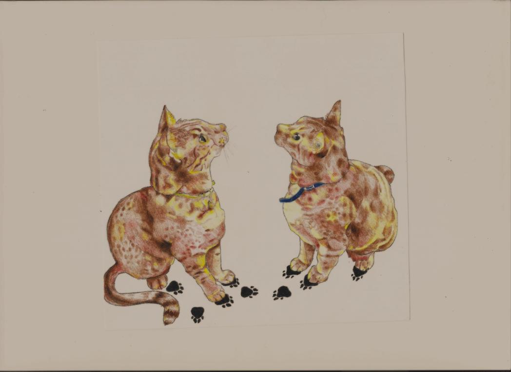 Cat ballet by loenabelle