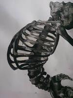 Monochrome Skeleton by CraigRDesigns