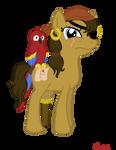 Pirate Pony: Scallywag