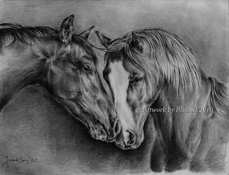 HORSES by blanket86