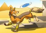 egyptian frisbee
