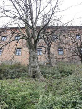Bratislavsky hrad 2