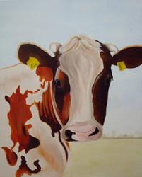 Cow by seiltje1