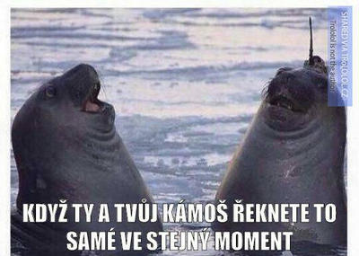 When you and your friend say the same thing  by Night-BlizzardSky