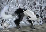 Poseable Art Doll - Arctic Dragon