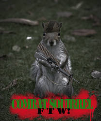 Combat Squirrel by AshleySmash