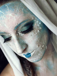 :: Frozen.I by Ryuki-SP