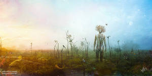 Internal Landscapes