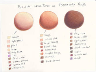 My Prismacolor Skin Tone Color Palette by ArtisticAdventures
