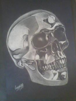 Chromed Skull