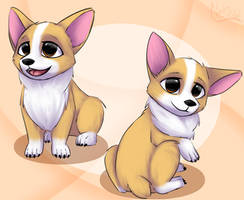 Corgis by Nekinu-the-Outsider