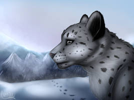 Snow leopard by Nekinu-the-Outsider