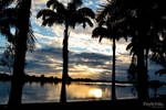 Last Rays Across the Lagoon