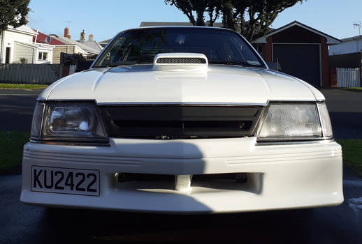 Holden VH Commodore