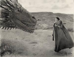 Jon Snow Meets Drogon