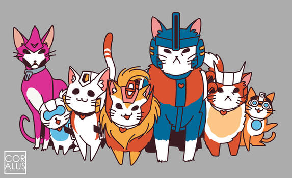 MTMTE: More than meets the Meow!