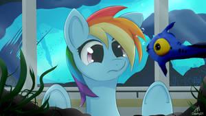 Rainbow Dash - Aqua Theme