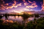 Acres of Sky by Questavia