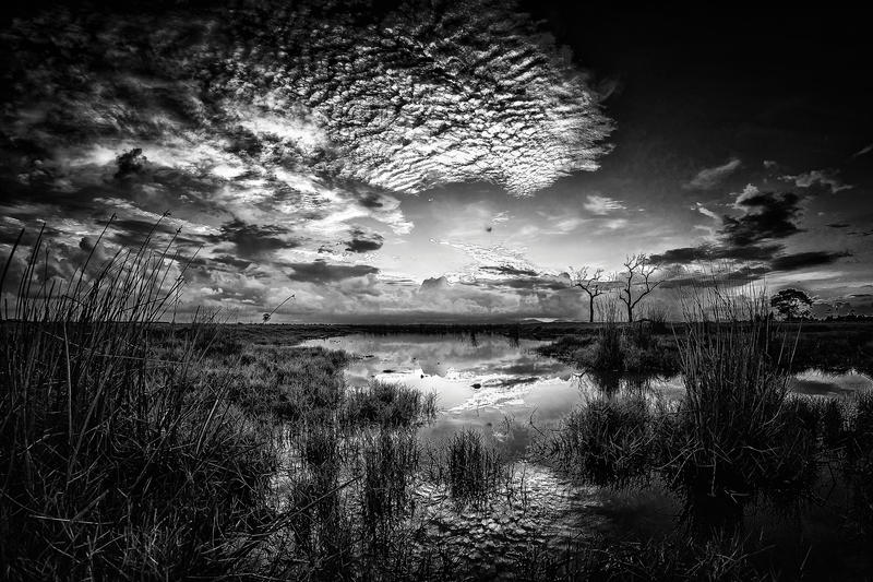 Across The Pond BW by Questavia