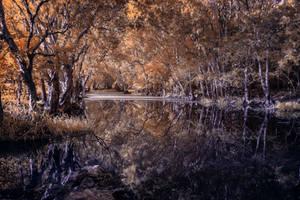 Majestic River IR by Questavia