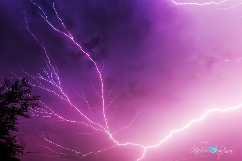 Thunder Bats by Questavia by Questavia