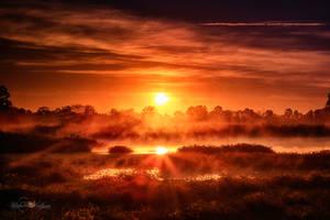 Dawn Of Fire by Questavia