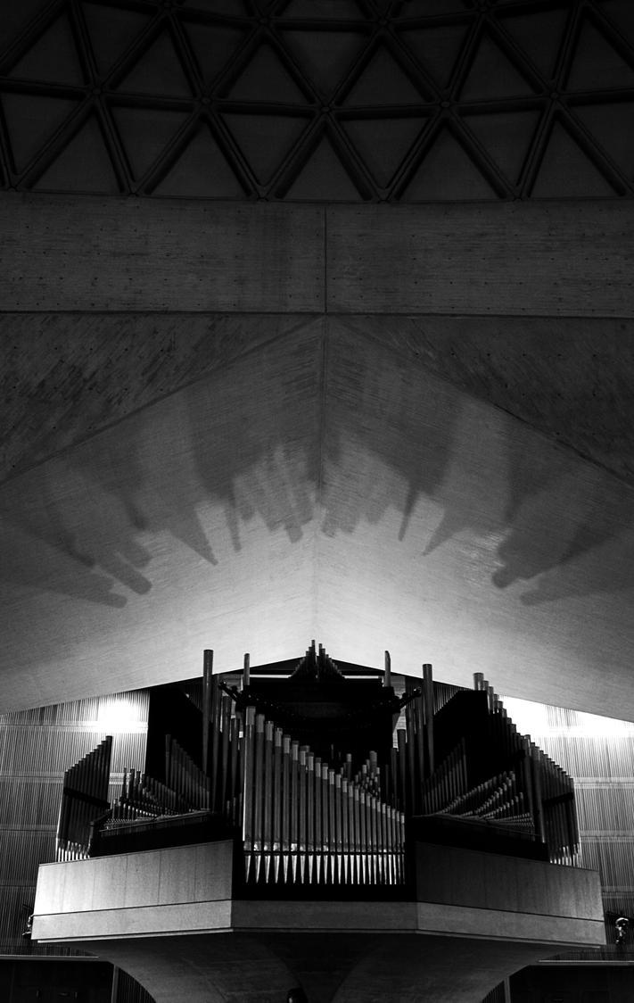 Shadows by RoidesHippopotames