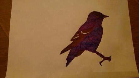 Blue Bird Pen Drawing By Whitewolfwithredeyes On Deviantart