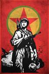 In Solidarity with TIKKO, MKP, PKK