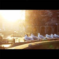 evening chill by PatrickRuegheimer