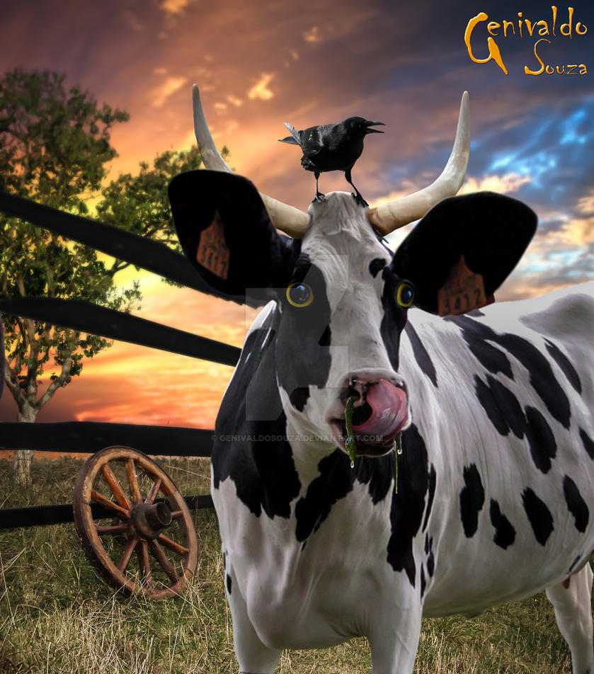 cow flu Flu-nix™ d is also indicated for the control of inflammation in endotoxemia dose and administration horse: the recommended dose for musculoskeletal disorders is 05 mg per pound (1 ml/100 lbs) of bodyweight once daily.