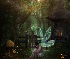 The abandoned fairy by genivaldosouza