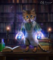 The alchemist cat by genivaldosouza