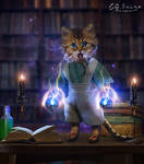 The alchemist cat