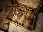 Mandrake Specimen Curio Box