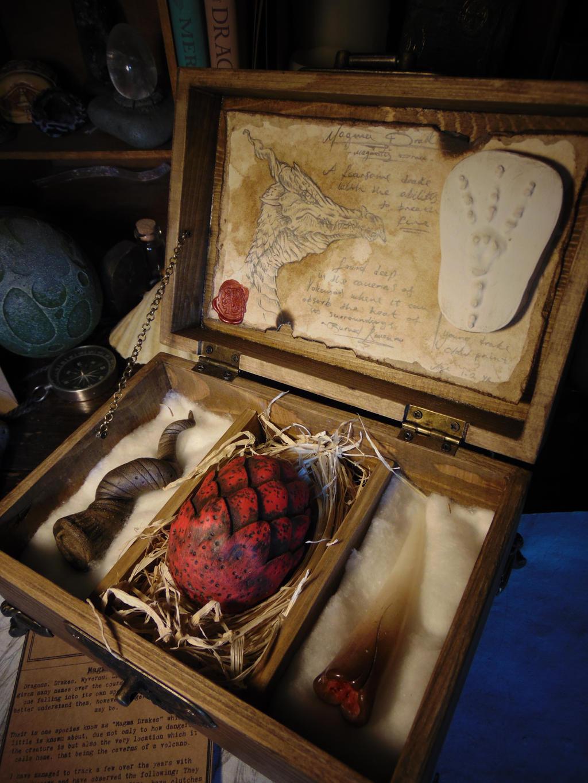 Magma Drake Specimen Box by BurnedRavenTales