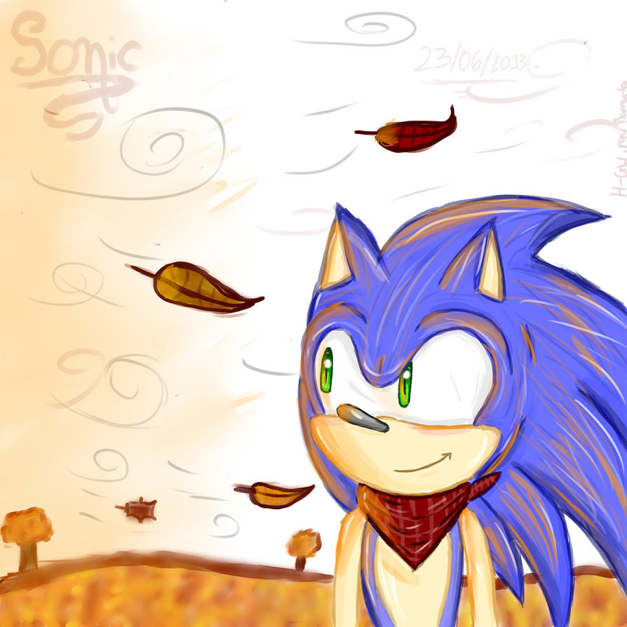 Sonic by RayRamador