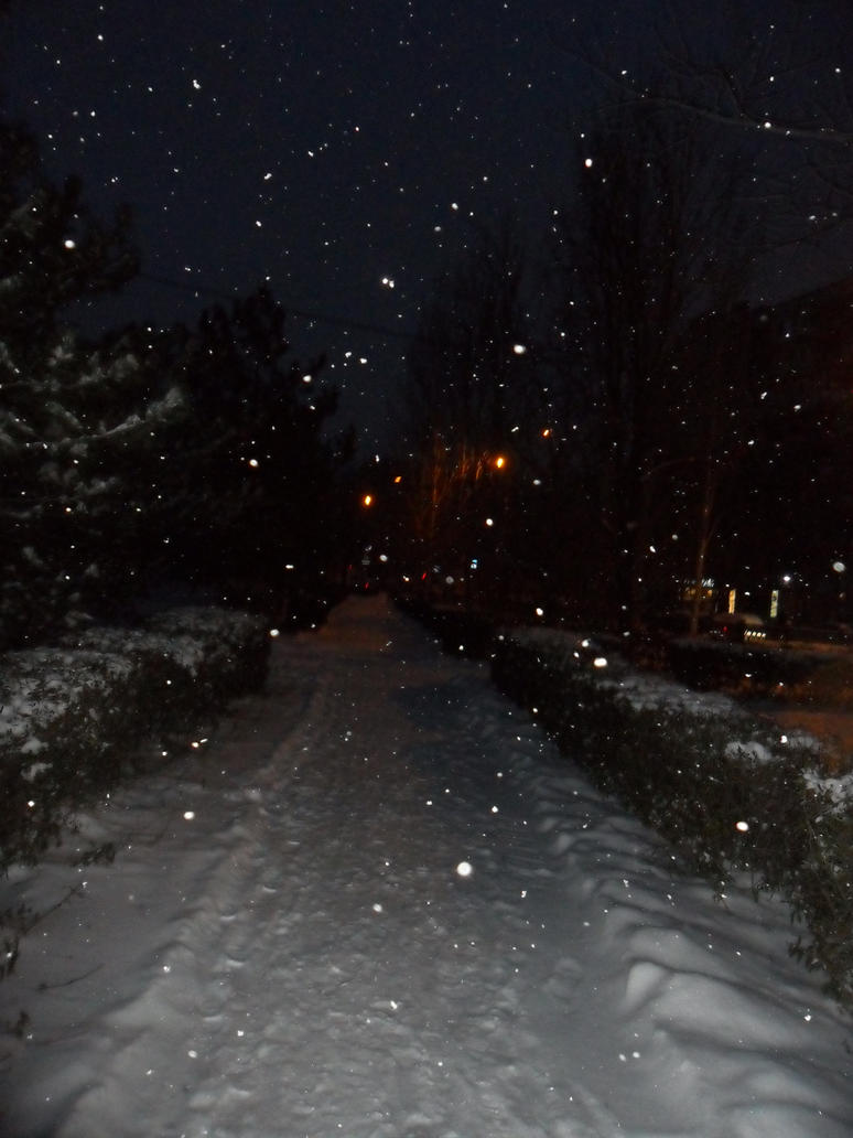 In my city the winter has come by Not-Sleeping-Owl