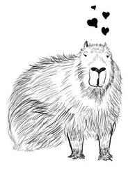 Valentine Capybara by adoomer